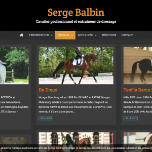 chevaux-page-1-serge-balbin-cavalier-professionnel-et-entraineu_-www-sergebalbin-dressage-com