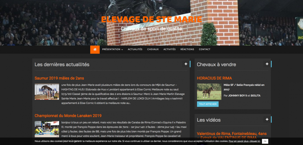 elevage-de-ste-marie-chevaux-de-sport-de-qualite_-www-elevagedestemarie-com