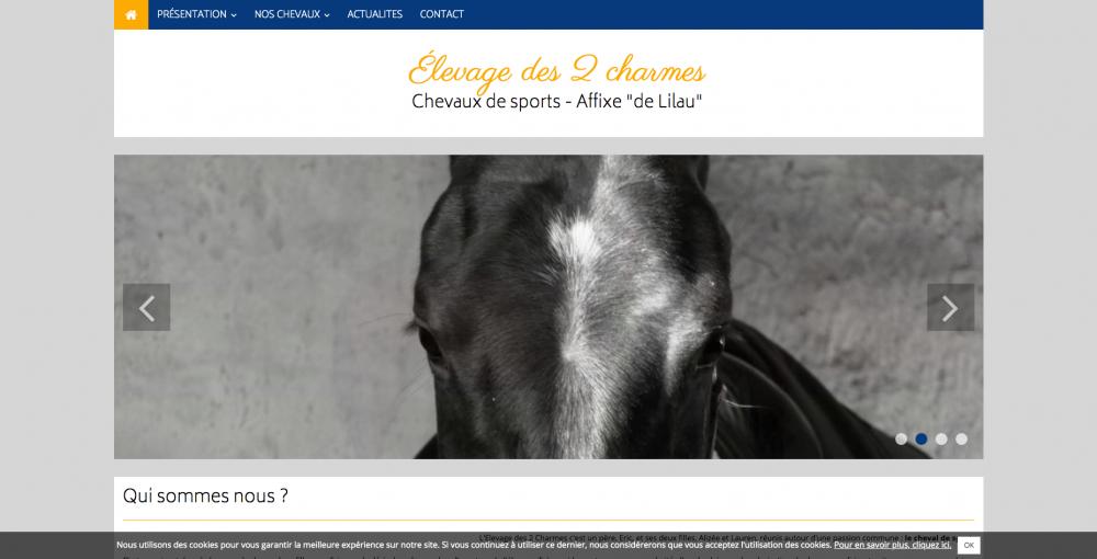 elevage-des-2-charmes-chevaux-de-sports-affixe-_de-lilau__-www-elevagedes2charmes-fr