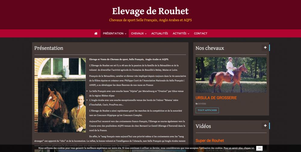 equia-equestre-presentation-elevage-de-rouhet-chevaux-de-sport-selle-franc%cc%a7ais-a_-www-elevagederouhet-com