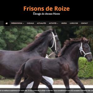 frisons-de-roize-elevage-de-chevaux-frisons-www-frisons-roize-com
