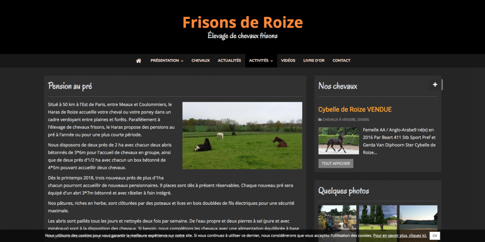 pension-au-pre-frisons-de-roize-elevage-de-chevaux-frisons_-www-frisons-roize-com