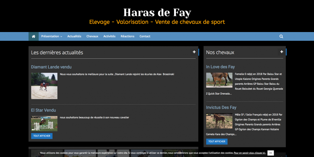 site-cheval-haras-de-fay-elevage-valorisation-vente-de-chevaux-de-sport_-www-harasdefay-fr